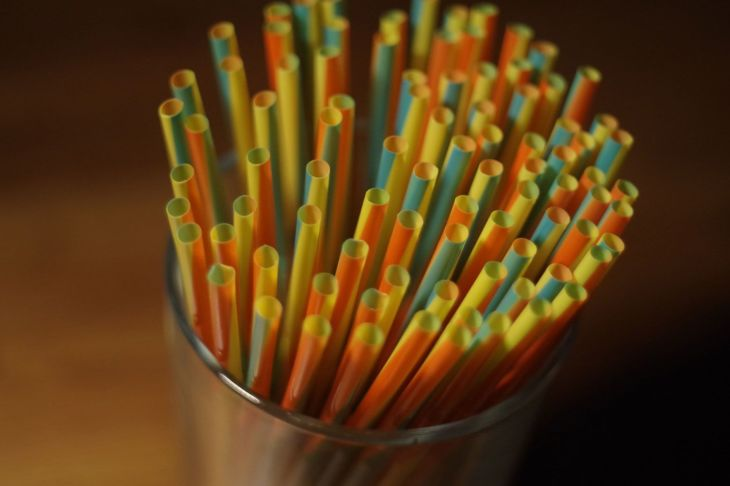 Ditch the Plastic Straw