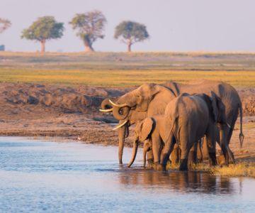 Sustainable Tourism Botswana